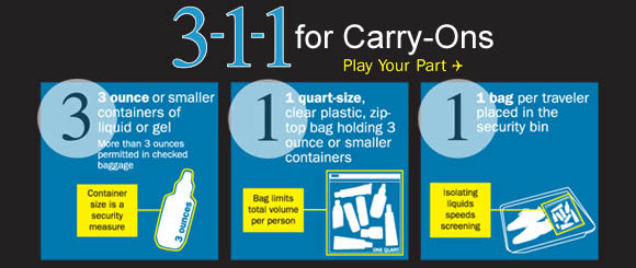 3-1-1 Travel Guidelines